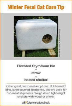 In cold weather, shelter is actually more important for stray animals. Here are… In cold weather, shelter is actually more important for stray animals. Here are some suggestions for making shelters for ferral cats. Feral Cat Shelter, Feral Cat House, Outdoor Cat Shelter, Outdoor Cats, Feral Cats, Cat Care Tips, Pet Care, Pet Tips, Gato Animal