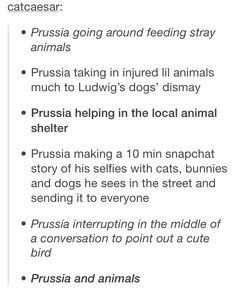 this confirm the fact that prussia is perfect and he has no character flaws *-*