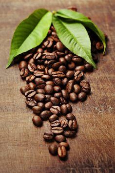 Идеальный натюрморт Beans Image, Coffee Pictures, Coffee Aroma, Coffee Mugs, Coffee Quotes, Coffee Cafe, Coffee Beans, Coffee Shop, Wooden Background