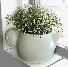 baby breath flowers in little tea pot