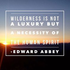 """Wilderness is not a luxury but a necessity of the human spirit."" - Edward Abbey #RV #WednesdayWisdom #truth #travel #life #lifequotes #rvcolorado #colorado #wanderlust #lifeofadventure #lifeisbeautiful #quotestoliveby #beauty #inspiration #inspirationalquotes #inspiringquotes"