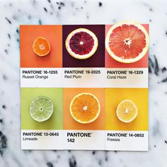 Pantone Food: Photographer matches colourful food to different Pantone shades | Lucia Litman certainly grew up, but that didn't stop her playing with her food. The digital marketer, occasional photographer and food stylist loves to match fruit, vegetables, snacks and treats to Pantone colours and then share them with the world.