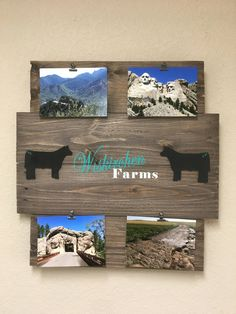 Picture board, show steer, livestock decor, photo memory board, memory board, wood sign, picture frame, reclaimed wood, photo display board by CraftedSimplyInc on Etsy Photo Display Board, Photo Displays, Display Boards, Picture Wire, Picture Frames, Old Wood Projects, Fair Projects, Show Steers, Show Cattle