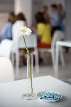 Konferencja prasowa Marc Jacobs Daisy Dream - ciasteczka