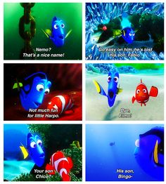 Real fish versus finding nemo fish disney cartoon and for Finding nemo fish names