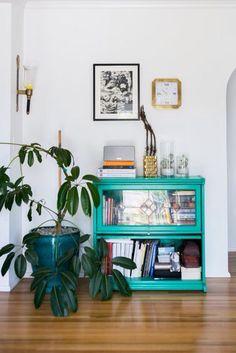 Frames + plants