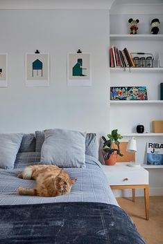 Grey and blue guest bedroom [📸 Chris Snook] Tile Bedroom, Hardwood Bedroom, Bedroom Floor Tiles, Spare Bedroom Ideas Grey, Concrete Bedroom, Hardwood Bedroom Floors, Spare Bedroom, Bedroom Flooring, Concrete Floors Bedroom