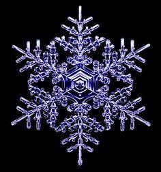 宝石みたい。研究者が数年にわたり記録した雪の結晶たち : ギズモード・ジャパン