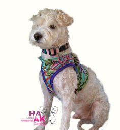 Pechera para perro tejido artesanal maya /mayan handmade dog haness por HanakDogsClothing en Etsy.