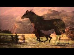 "Leo Rojas   ""Watch Over My Dreams"" - YouTube"