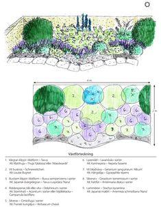 Flower Garden Plans, Garden Mum, Purple Garden, Dream Garden, Tulips Garden, Garden Beds, Colorful Garden, Small Garden Design, Plant Design