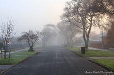 Melbourne Street on a foggy morning in Invercargill. Melbourne Street, Foggy Morning, Mists, New Zealand, Scenery, Sidewalk, June, Country Roads, Australia