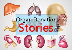 4 Best Organ Donation Stories to get Inspired : One of the best quotes of organ donation I have come across recently is 'Recycle organs, not just coke cans'.