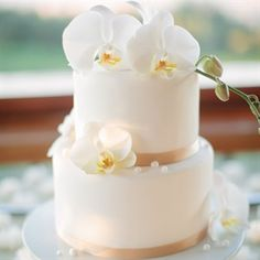 Chic Orchid Cake