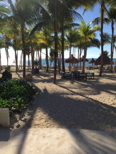 Hotel Riu Playacar 5* All Inclusive - Playa del Carmen | Let's Get Going! I miss this place.
