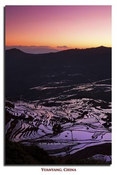 Sunrise at Duoyishu Rice Terraces in Yuanyang, Yunnan Province_ China