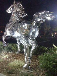 Chrom-horse...woodland, ca...