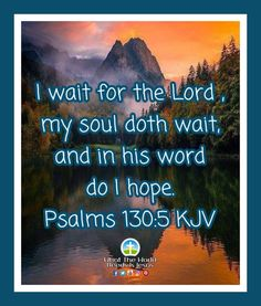 Wait on Lord, and in His word, do hope. He is such a good good Father, trust in Him alone! #Sundayblessings #waitontheLord #HeisagoodgoodFather #trustinHim Daily Bible Inspiration, World Need, Wait For Me, Good Good Father, Alone, Psalms, Trust, Waiting, Blessed