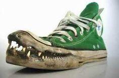 507b1bb266b Krokodil Converse Schoenen, Haaienschoenen, Schoenen Sneakers, Damesschoenen,  Groene Converse, Gekke Schoenen