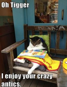 """""""I have so much to learn from you."""" #pawnation #animals #cats #meme #animalmeme"""