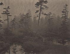 Silent Respirations of Forests, Yosemite N°21 © Takeshi Shikama -- platinum/palladium prints, handmade by the artist on traditional Japanese gampi paper