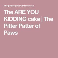 The ARE YOU KIDDING cake | The Pitter Patter of Paws