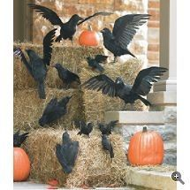 Halloween Crows & Vultures - Buy the birds on line and get the hay from a local garden supply store...FUN!!!