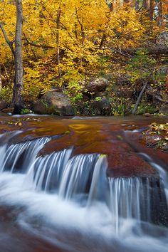 Horton Creek - Tonto National Forest, Arizona.