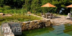 Two-tier natural swimming pool