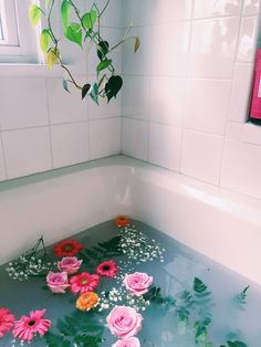 Flower filled bath.