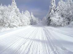 Snowmobile trail, NH