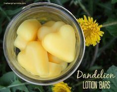 How To Make Dandelion Lotion Bars | Health & Natural Living