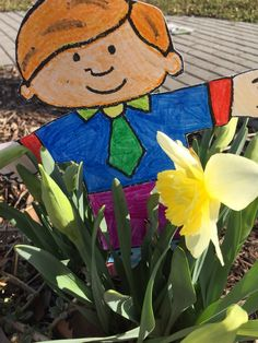 Flat Stanly and a Spring Daffodil.