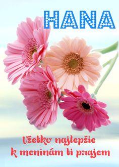 Hana Všetko najlepšie k meninám ti prajem Plants, Page Boy, Flora, Plant, Planting