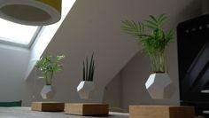 Levitating Magnetic Planters : floating plants