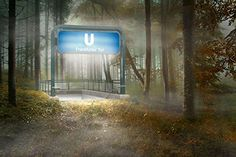 Frankfurter Tor Subway Station (Print - 10x15 in.). Frankfurter Tor Subway Station by Uli Staiger is an eerie depiction of a subway station, well lit with flurescent light, placed within a deserted forest landscape. This imaginative surreal landscape offers no apology or explanation, simply requiring the viewer to expect the unexpected.