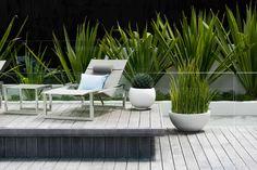 Rose Bay Landscape Design by Secret Gardens - Sydney Landscape Architects Landscape Architecture, Landscape Design, Futuristic Architecture, Rose Garden Design, Rose Bay, Sydney, Coastal Gardens, Modern Gardens, Melbourne House