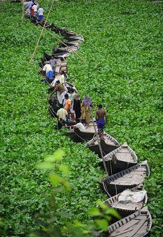 Bangladesh Boat Bridge