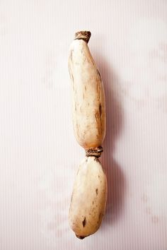 Lotus Root helps to promote respiratory clarity.