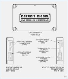 Admirable Nissan 350Z Ecu Wiring Diagram 5 Ecu Nissan 350Z Nissan Es Diagram Wiring Cloud Hisonuggs Outletorg