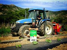 """Arte & Ortu oghje NEW ARTWORK """"Corsicans Explosive Vegetables"""" pour L'Ortu di Babbò - Jean Luc Geronimi - Acrylic on barrel - - Acrylique sur tonneau - #Exemplaireunique #Marzulinu #Balagna #Agricultura #Bio #nomansota #corsica #agriculturebiologique #popart #art #biogarden #ortu"""