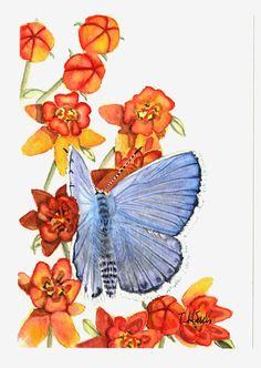 Blue moth butterfly painting 5x8 original от Earthspalette на Etsy