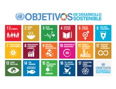 Campaña de los ODS en redes sociales en América Latina y el Caribe   UNV