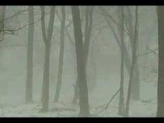 Snowy Day Bigfoot