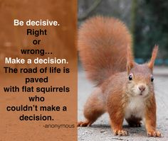 Don't be a flat squirrel on the road of life!  Make a decision!