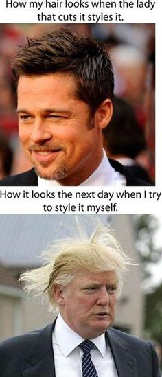 My Hair Looks - funny pictures - funny photos - funny images - funny pics - funny quotes - funny animals @ humor