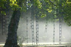 L'Arbre Aux Echelles by Francois Mechain at Chaumont-sur-Loire
