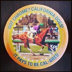 Cal-bred California Chrome button