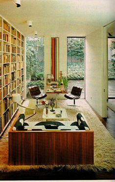 retro decor home library.... shag carpeting and tall windows =D