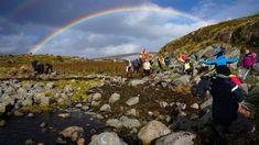 Forskere fant opptil 20 prosent plast i jordsmonnet ved strender i Trøndelag – NRK Trøndelag – Lokale nyheter, TV og radio Kai, Mountains, Nature, Travel, Pictures, Naturaleza, Viajes, Destinations, Traveling